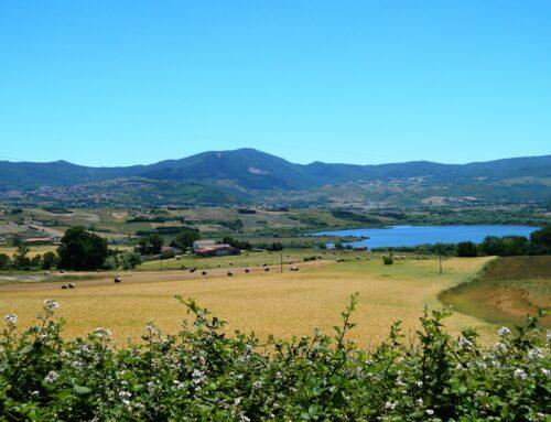 Lago di Pantano: oasi WWF